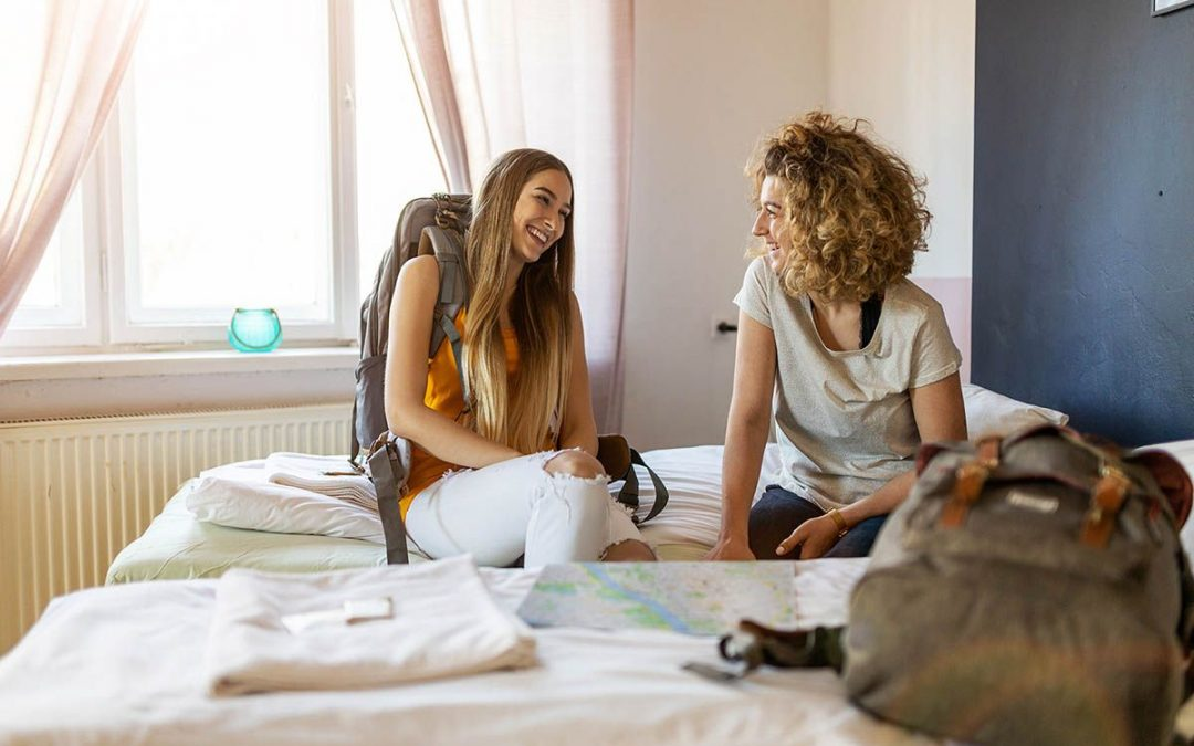 Albergues sin chinches: Tratamientos para evitar la propagación